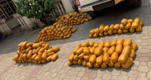 NDLEA intercepts  fake military officers with 234kg illicit drugs (photos)