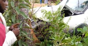 Woman dies in auto crash while speeding to catch a cheating husband