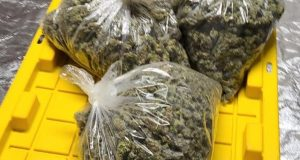 Cannabis will boost internally generated revenue and industrialization  – Reps spokesman