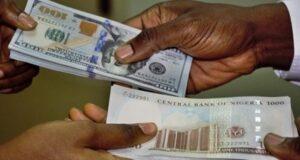 Naira falls to 505/$ as CBN stops forex to BDCs