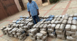 NDLEA busts interstate drug cartels, recovers 843kg skunk and cocaine