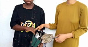 Female poly students, widow, others arrested as NDLEA seizes drugs in Abuja hotel, Lagos, Edo and Kaduna